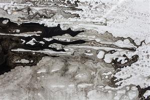 untitled (no. 1)[detail] by athena latocha